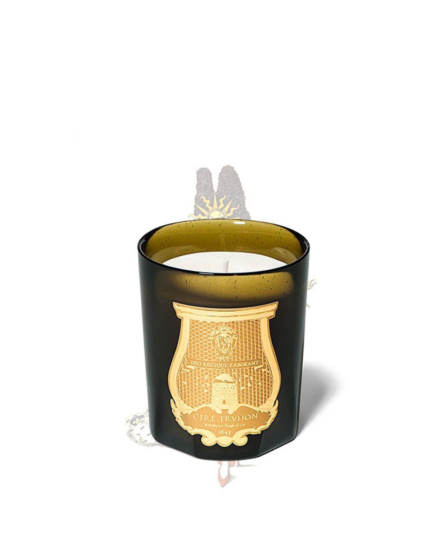 香氛蜡烛——凡尔赛宫的木艺(270g)Solis Rex